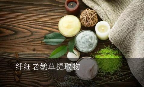 纤细老鹤草的护肤功效与作用,纤细老鹤草提取物是什么成分