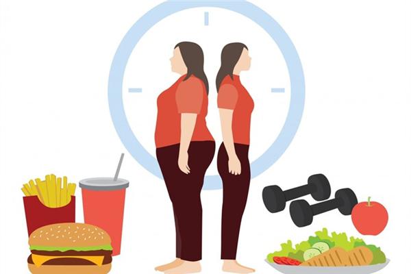 科学减肥法是什么?科学减肥法有哪些